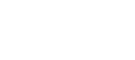 Digital Sense logo