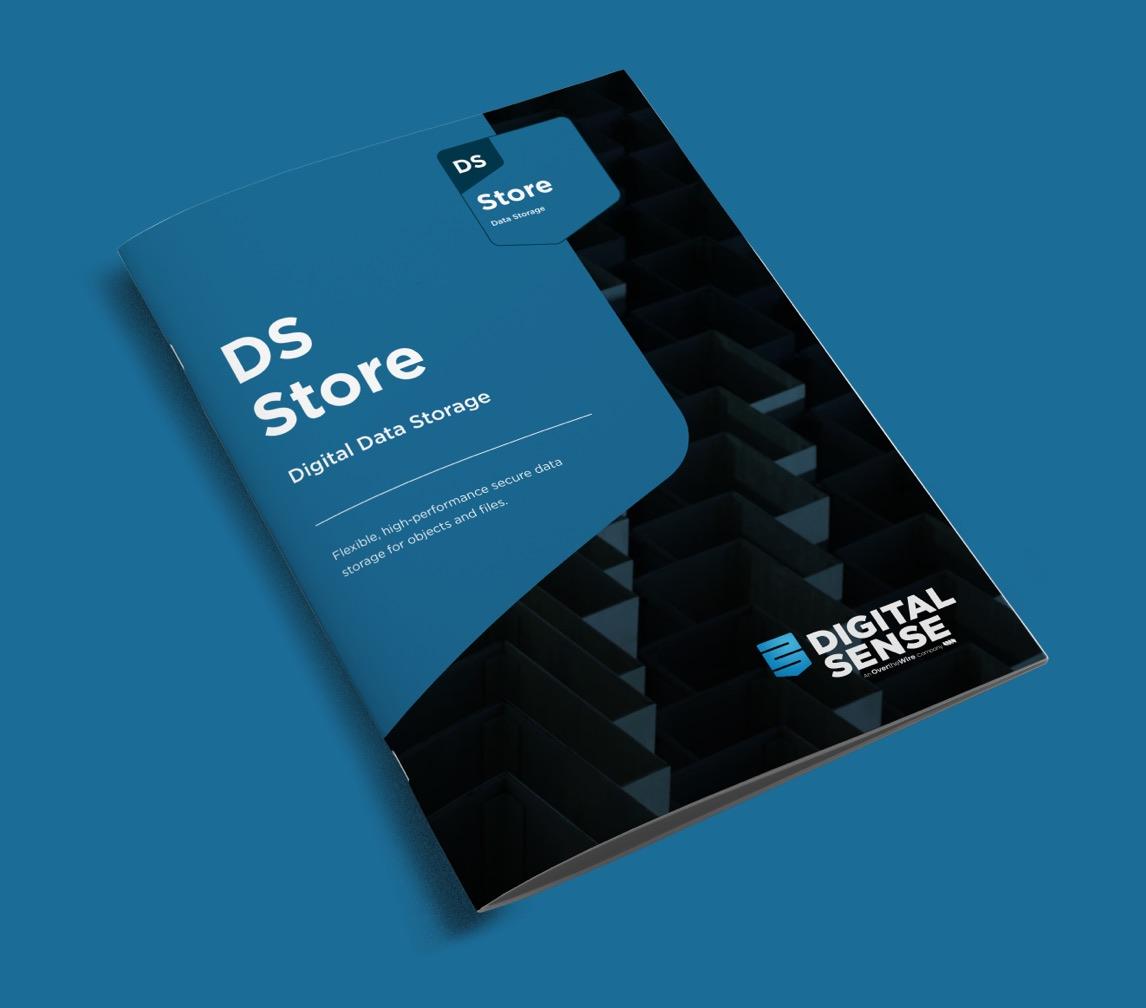 DSStore Brochure